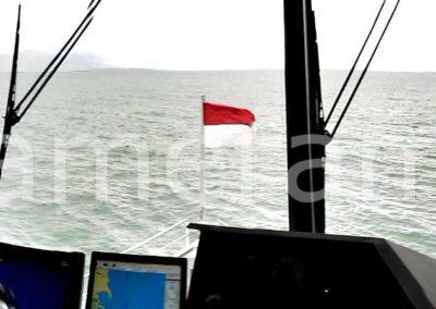 20140815 100618 chelles allee 1 400x284 - 4 in einem Boot