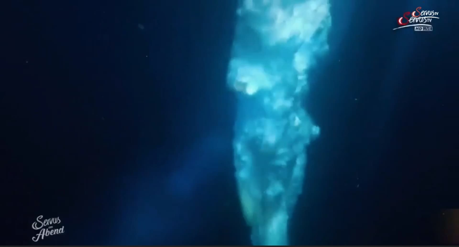 ServusTv – Red Bull Cliff Diving